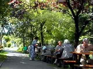 Der schattige Gastgarten