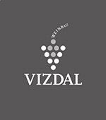 Vizdal-Logo